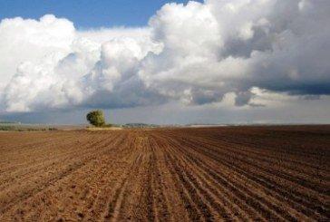 На Тернопільщині деякі сільгоспвиробники ухилялись від сплати ПДВ