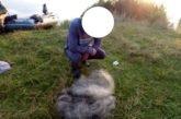 На Тернопільщині виявили 33 випадки браконьєрства