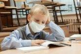 Як працюватимуть школи в умовах коронавірусу