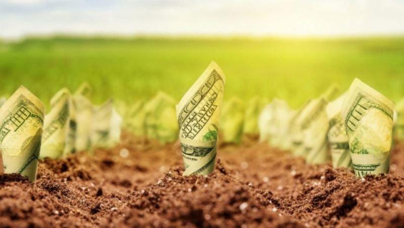 Скільки вартуватиме земля в Україні після відкриття ринку
