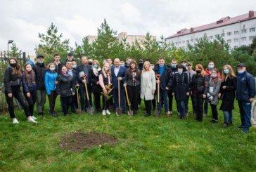Класичний університет Тернополя взяв участь у Всеукраїнському проєкті «Озеленення України» (ФОТО)