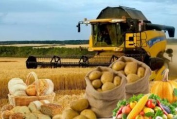 Скільки працівників у сільському господарстві Тернопільщини?