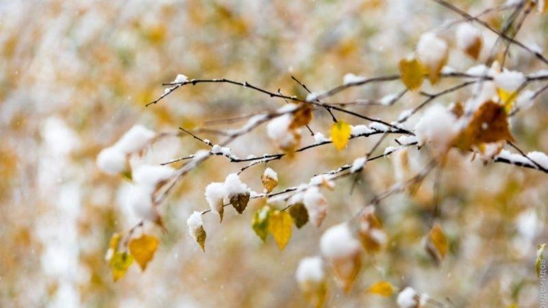 На Тернопільщині в неділю буде морозно і можливий сніг