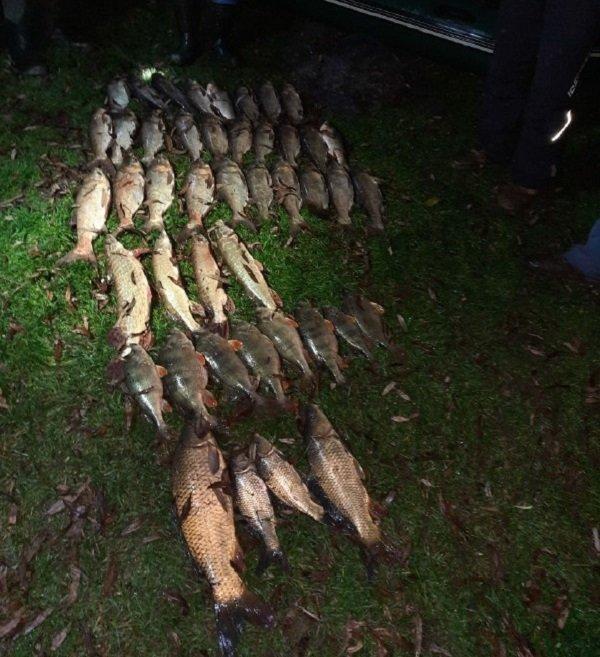 На Теребовлянщині браконьєри наловили риби майже 10 000 гривень