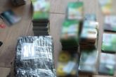 Податкові міліціонери Тернопільщини викрили кримінальну схему на ринку нафтопродуктів