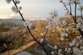 Синоптики розповіли, якою буде погода в березні: весна прийде не скоро