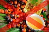 В Україні можуть заборонити пальмову олію