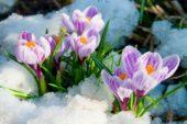 26 лютого - яке сьогодні свято, прикмети та іменинники, що не можна робити