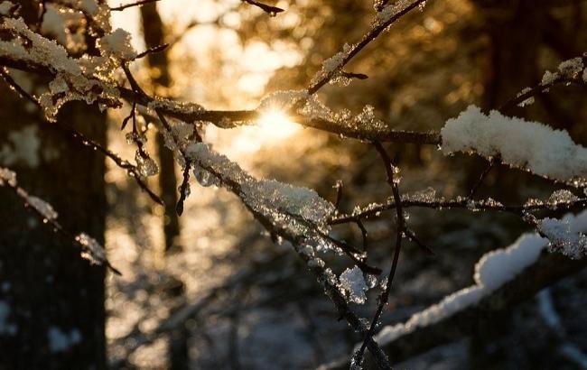 Тернопільщину в понеділок порадує лютневе тепло