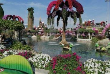 За казкою – у Дубай: як у пустелі розквітнув дивовижний сад (ФОТО)