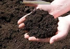 Розкислюємо ґрунт правильно