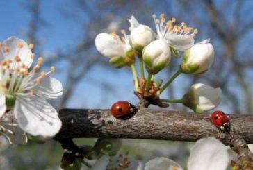 23 квітня - яке сьогодні свято, чим день увійшов в історію, прикмети та заборони