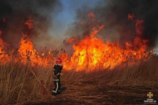 Невгамовні палії: на Тернопільщині суха трава горить гектарами