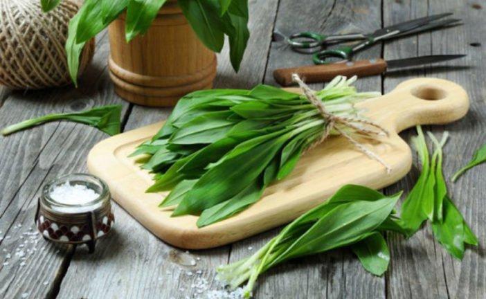 Черемша, шпинат, брокколі, редиска - неймовірні рецепти для весняного меню