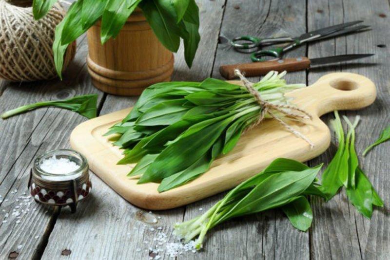 Черемша, шпинат, брокколі, редиска – неймовірні рецепти для весняного меню