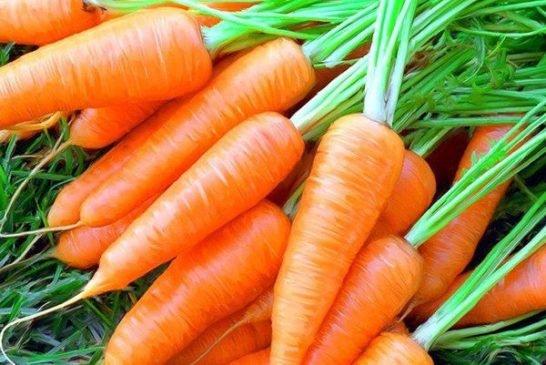 Потрібен пісок і пухкий ґрунт: секрети гарного врожаю моркви