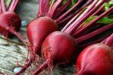 Золоті правила вирощування солодкого червоного буряка