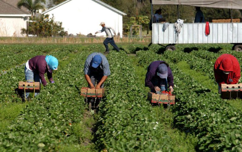 У Польщі скаржаться на нестачу українських робочих рук