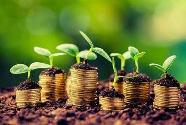 Капітальні інвестиції на Тернопільщині: які сфери отримали найбільше
