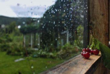 Літо повертається: у вівторок на Тернопільщині потепліє