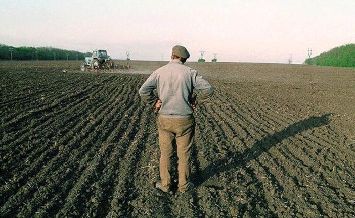 Українці можуть втратити земельні ділянки: кому це загрожує