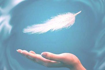 Пір'їнка від ангела