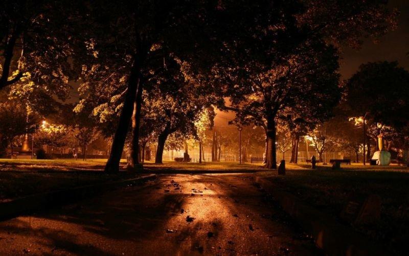 Уночі в парку невідомі побили 17-річну тернополянку