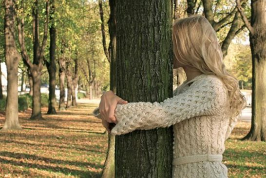 «Вам личить осінь...»