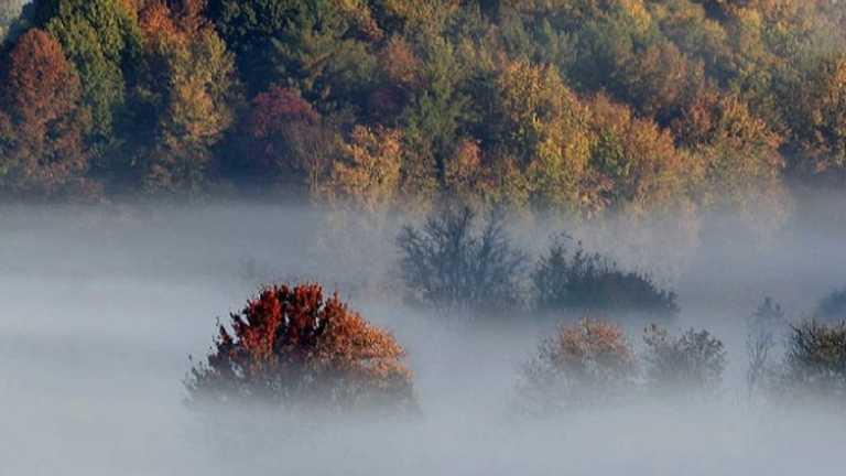 На Тернопільщині – прохолодно, туманно, зате без дощу